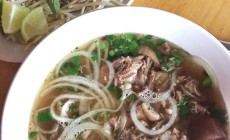 the best oxtail pho ever